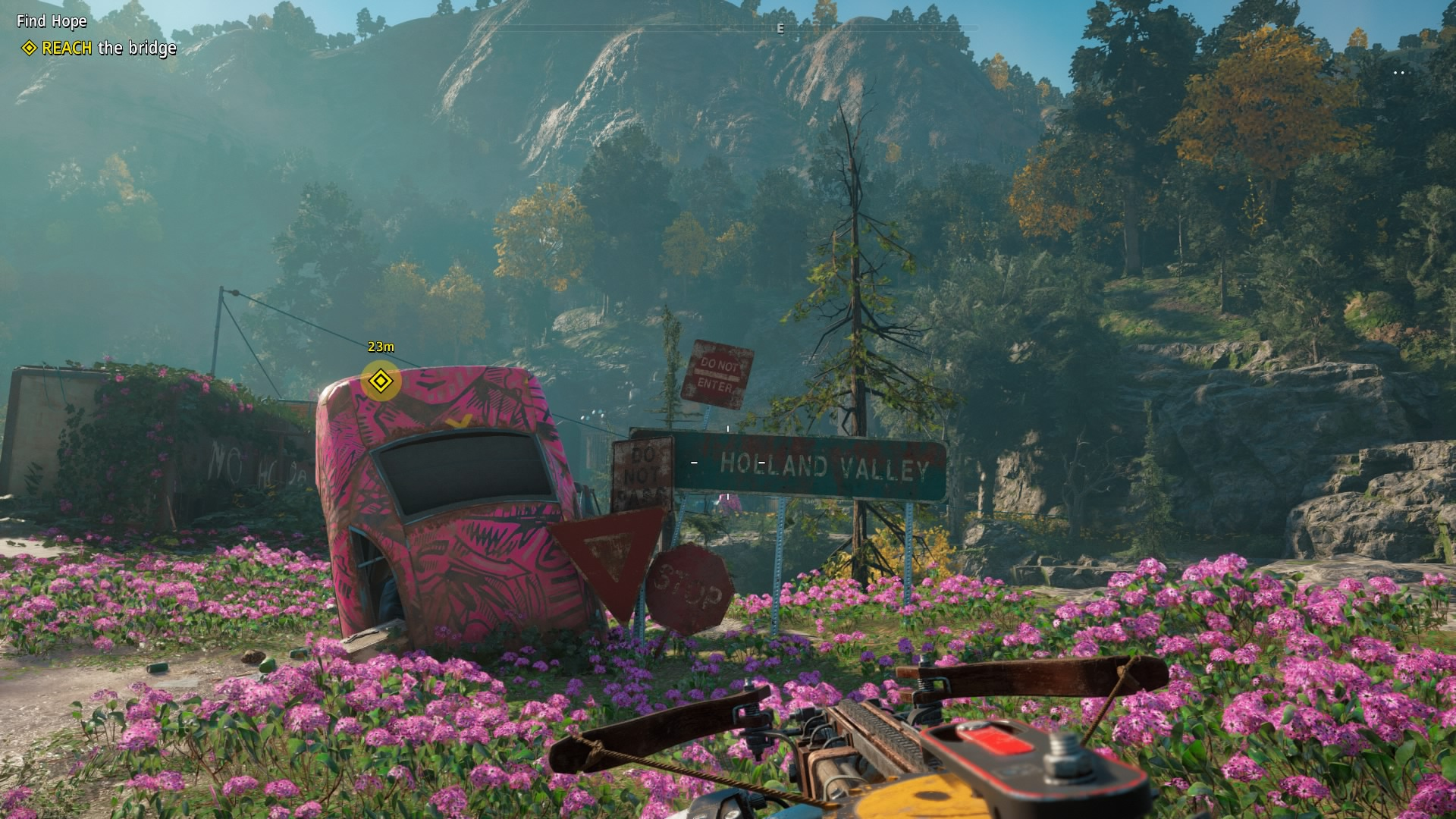 Far Cry New Dawn pink